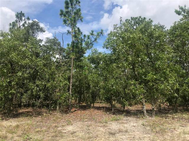 LOT 10 SW 125TH COURT Road, Dunnellon, FL 34432 (MLS #OM623184) :: Cartwright Realty