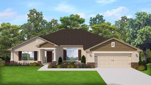 3973 NE 58TH Circle, Silver Springs, FL 34488 (MLS #OM623863) :: Prestige Home Realty
