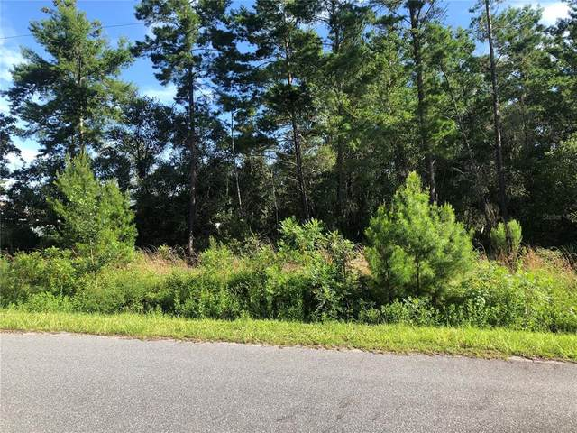 Lot 194 SW 114TH Place, Ocala, FL 34476 (MLS #OM624055) :: Better Homes & Gardens Real Estate Thomas Group