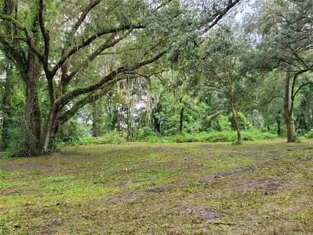 1 NW 160TH Avenue, Morriston, FL 32668 (MLS #OM624106) :: Everlane Realty