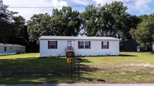 9970 SE 172ND Street, Summerfield, FL 34491 (MLS #OM624354) :: Better Homes & Gardens Real Estate Thomas Group