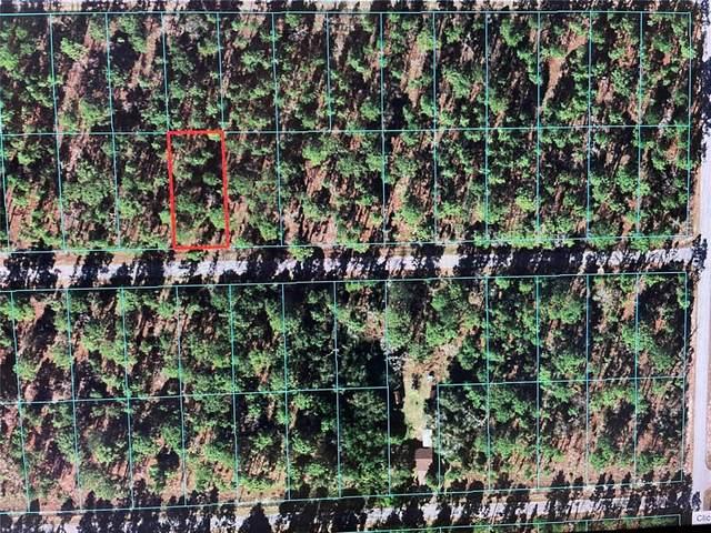 24159 NW Banyan Lane, Dunnellon, FL 34431 (MLS #OM624499) :: Expert Advisors Group