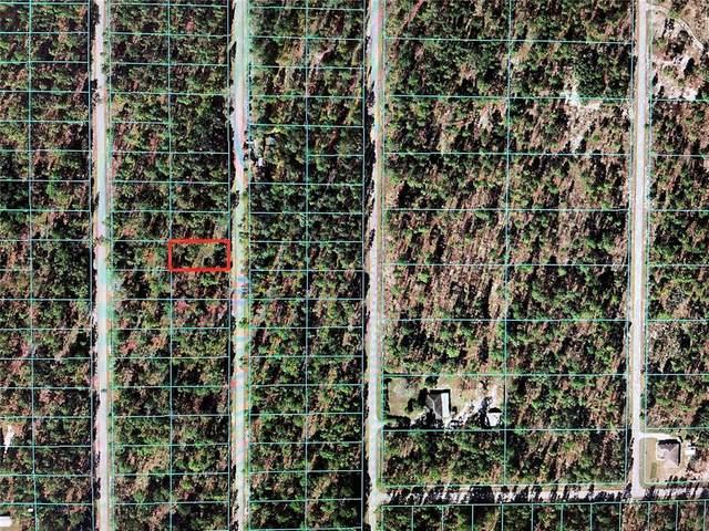TBD NW Narcissus Road, Dunnellon, FL 34431 (MLS #OM624501) :: Expert Advisors Group