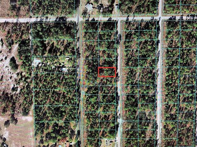 TBD SW Sycamore Road, Dunnellon, FL 34431 (MLS #OM624507) :: Globalwide Realty