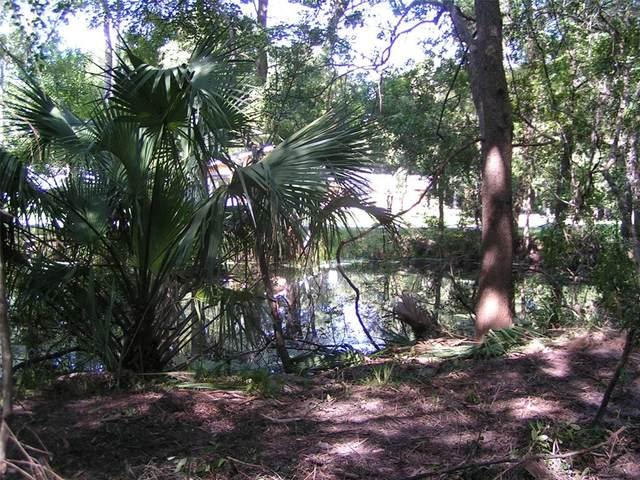 12910 N Isle Point, Dunnellon, FL 34433 (MLS #OM624574) :: Lockhart & Walseth Team, Realtors