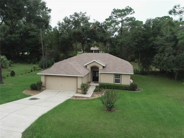 9728 SW 196TH Circle, Dunnellon, FL 34432 (MLS #OM625202) :: The Duncan Duo Team