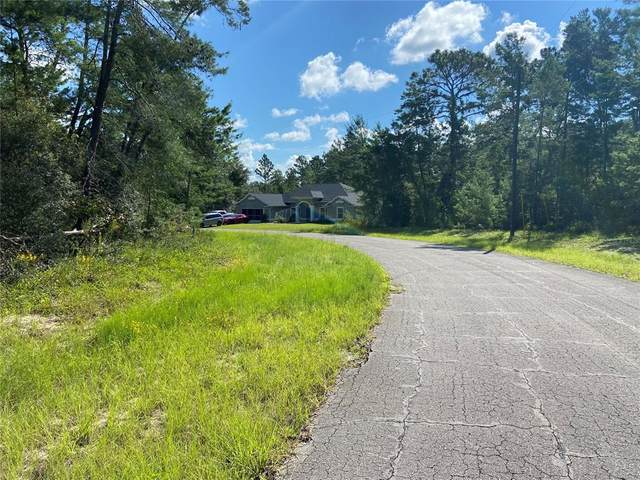 17580 SW 38TH TERRACE Road, Ocala, FL 34473 (MLS #OM625268) :: The Hustle and Heart Group