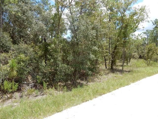 251 SE 142ND Terrace, Williston, FL 32696 (MLS #OM625352) :: The Hustle and Heart Group