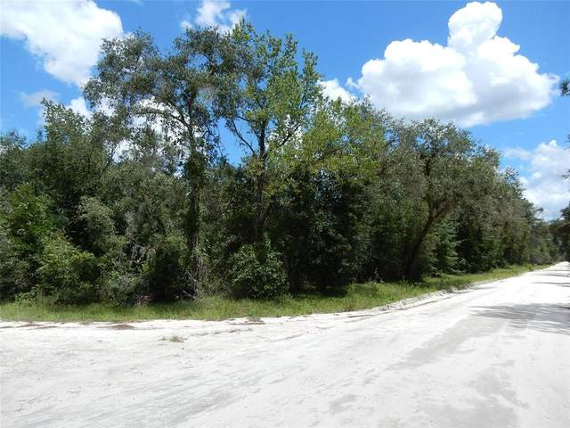 2351 SE 138TH Terrace, Morriston, FL 32668 (MLS #OM625358) :: Everlane Realty