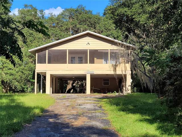 2045 SE 169TH AVENUE Road, Silver Springs, FL 34488 (MLS #OM626466) :: Premium Properties Real Estate Services