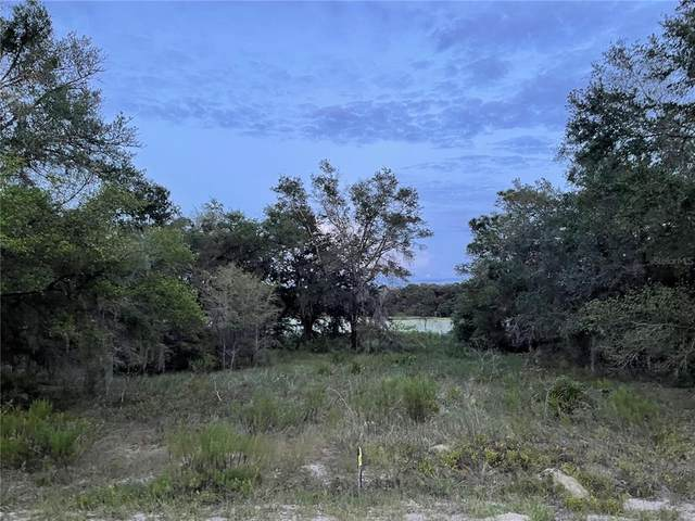 TBD SW Shorewood Drive, Dunnellon, FL 34431 (MLS #OM626827) :: RE/MAX Elite Realty