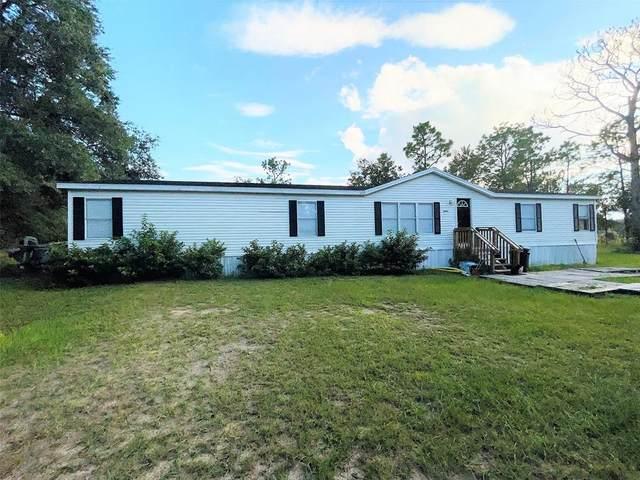 9991 NE 105TH Avenue, Archer, FL 32618 (MLS #OM626907) :: Vacasa Real Estate