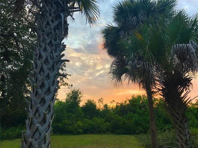 4312 Saxon Drive, New Smyrna Beach, FL 32169 (MLS #OM626916) :: Delgado Home Team at Keller Williams