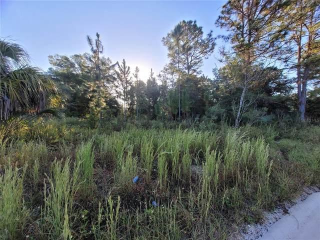 Se 123Rd  St Rd, Belleview, FL 34420 (MLS #OM626920) :: Everlane Realty