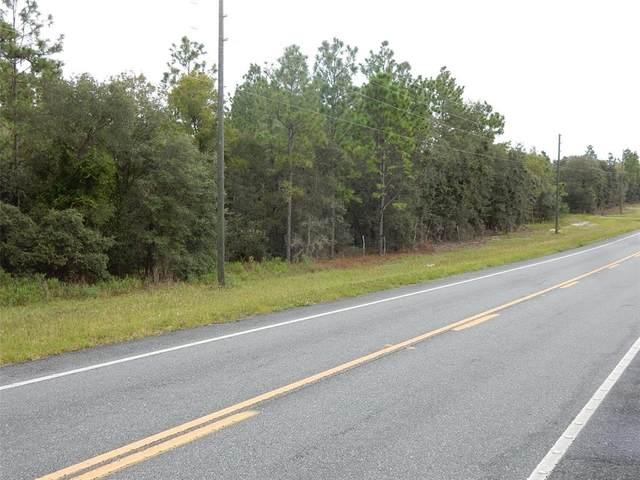 6690 SE State Road 121, Morriston, FL 32668 (MLS #OM627133) :: Vacasa Real Estate