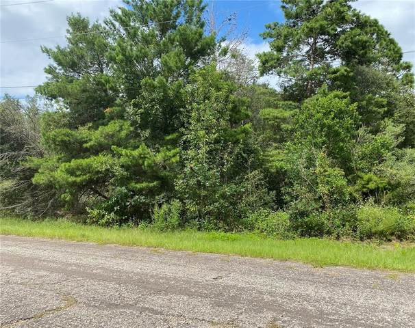 3071 W Juliet Place, Citrus Springs, FL 34433 (MLS #OM627578) :: Zarghami Group
