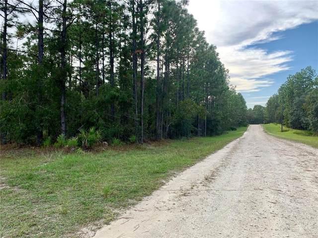 11400 Chickadee Road, Weeki Wachee, FL 34614 (MLS #OM628377) :: Everlane Realty