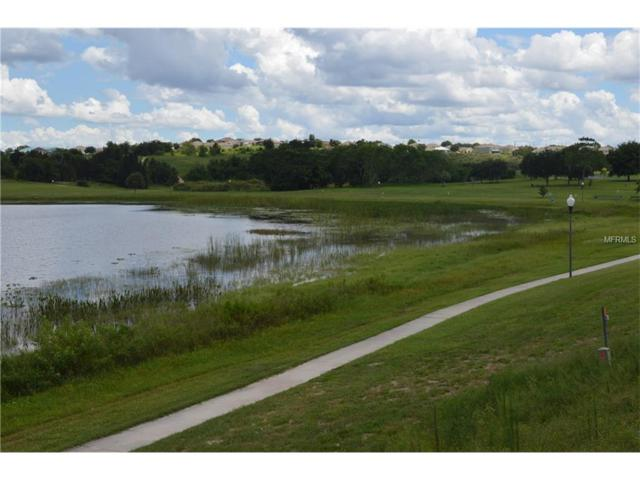 Lake Marie Drive, Dundee, FL 33838 (MLS #P4711416) :: The Duncan Duo Team