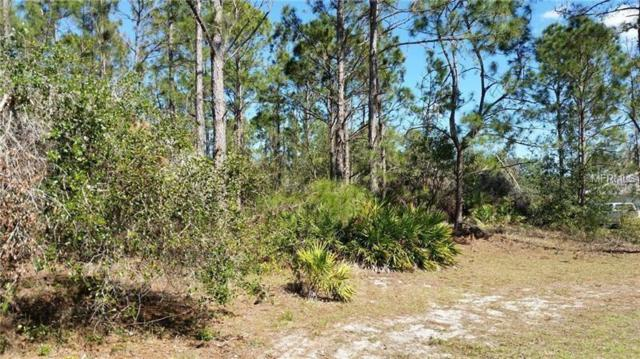 Avacado Drive, Lake Wales, FL 33898 (MLS #P4719855) :: Heckler Realty