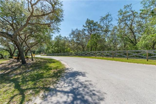 670 Turkey Oak Trail, Frostproof, FL 33843 (MLS #P4900242) :: NewHomePrograms.com LLC