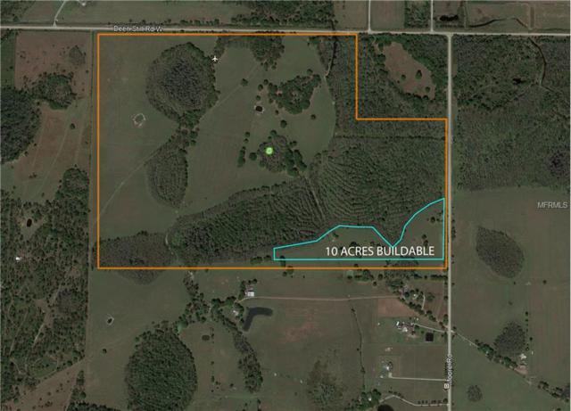 Deen Still Road W, Lakeland, FL 33809 (MLS #P4901401) :: Premium Properties Real Estate Services