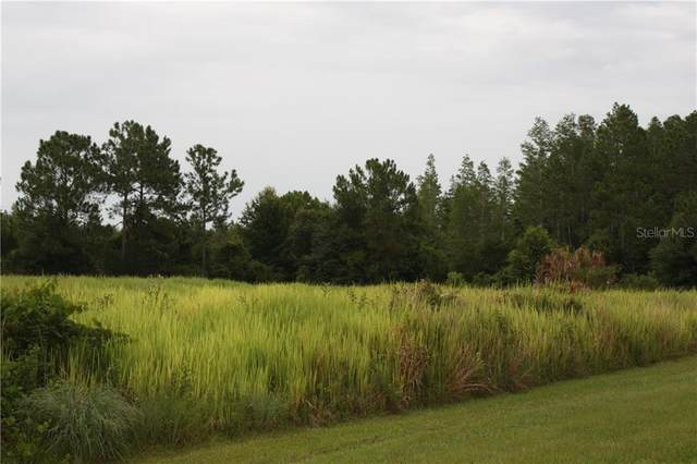 Tall Pine, Polk City, FL 33868 (MLS #P4907905) :: The Duncan Duo Team