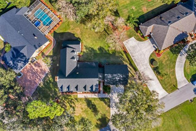 2941 Plantation Road, Winter Haven, FL 33884 (MLS #P4914055) :: The Price Group
