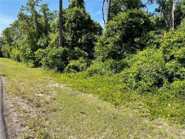 Deer Road, Frostproof, FL 33843 (MLS #P4915288) :: Positive Edge Real Estate