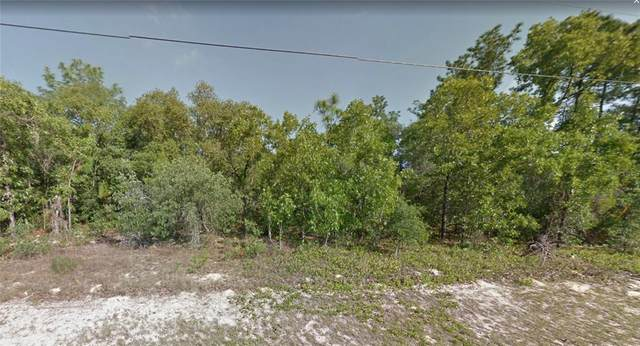 8537 N Linwood Loop, Citrus Springs, FL 34433 (MLS #P4916776) :: Team Turner