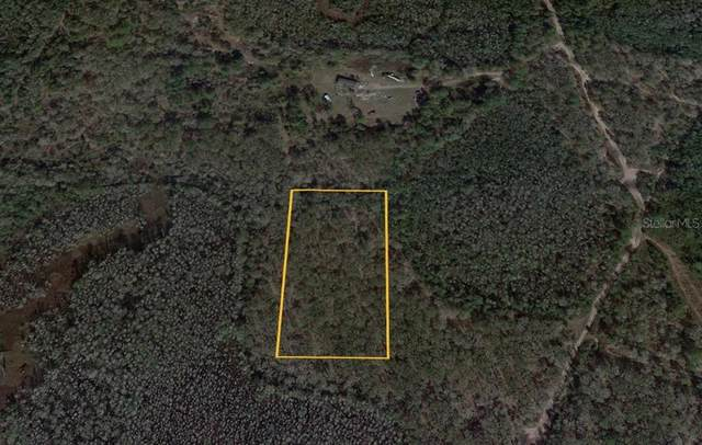 Water Road, Clermont, FL 34714 (MLS #P4916822) :: Everlane Realty