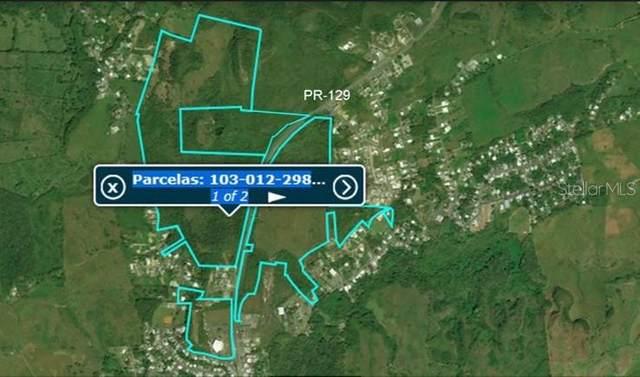 PR129 Km 14.2, ARECIBO, PR 00612 (MLS #PR9088408) :: Alpha Equity Team