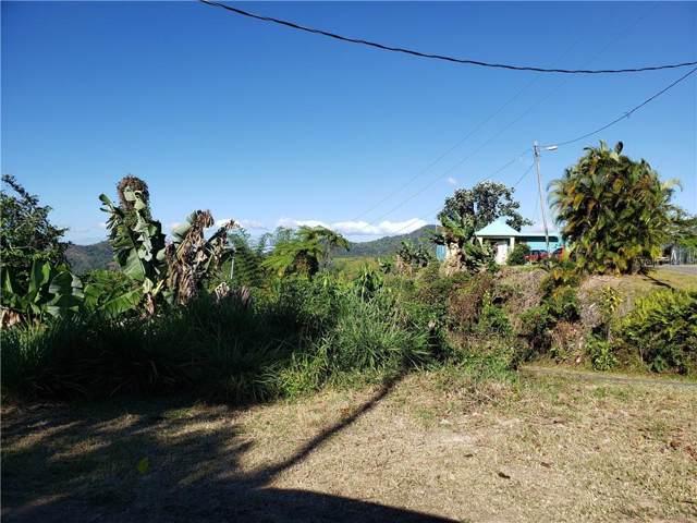 Km 0.7 Interior Pr-5521 Road #4, ADJUNTAS, PR 00601 (MLS #PR9088549) :: Bustamante Real Estate