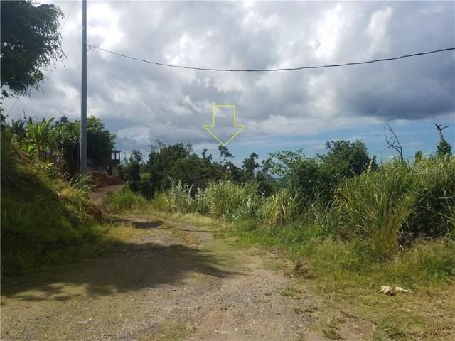 Km 0.7 Interior Pr-5521 Road #3, ADJUNTAS, PR 00601 (MLS #PR9088554) :: Bustamante Real Estate
