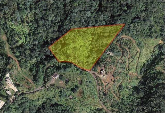 Pr-5521 Road #5, ADJUNTAS, PR 00601 (MLS #PR9088710) :: Bustamante Real Estate
