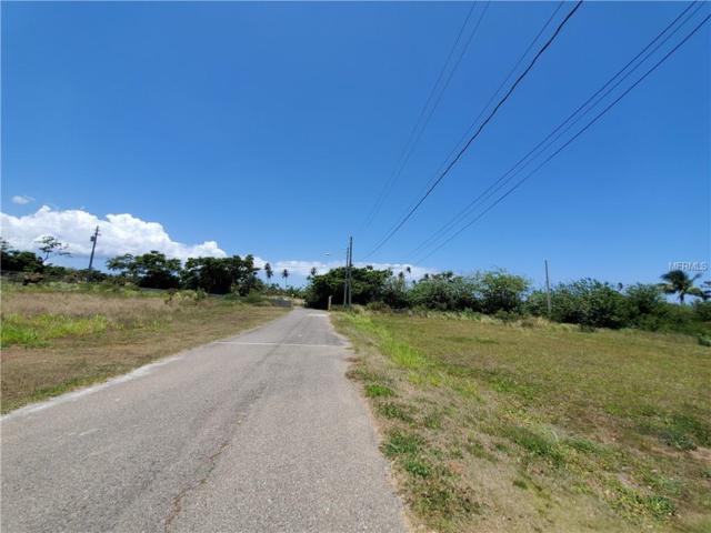 Road 459 km 13.1 int N Calle Las Uvas, ISABELA, PR 00662 (MLS #PR9088918) :: The Duncan Duo Team