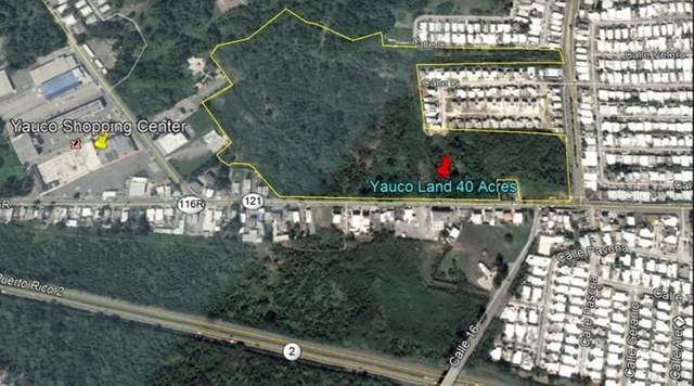 121 Sr, YAUCO, PR 00698 (MLS #PR9089080) :: The Lersch Group