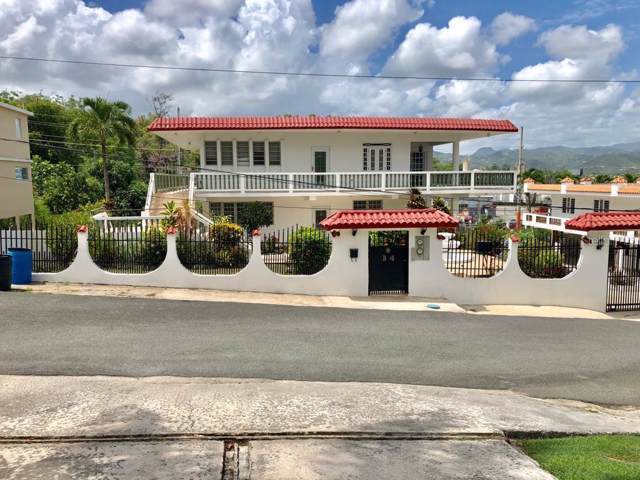 4 B Montebrisas, GURABO, PR 00778 (MLS #PR9089196) :: Ideal Florida Real Estate