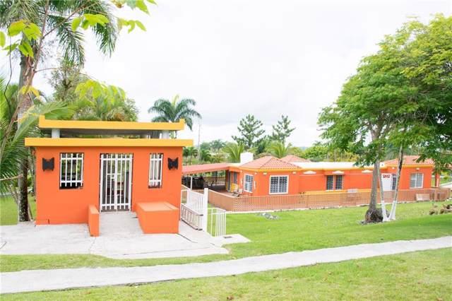 Calle C C6, CIDRA, PR 00739 (MLS #PR9089473) :: The Light Team