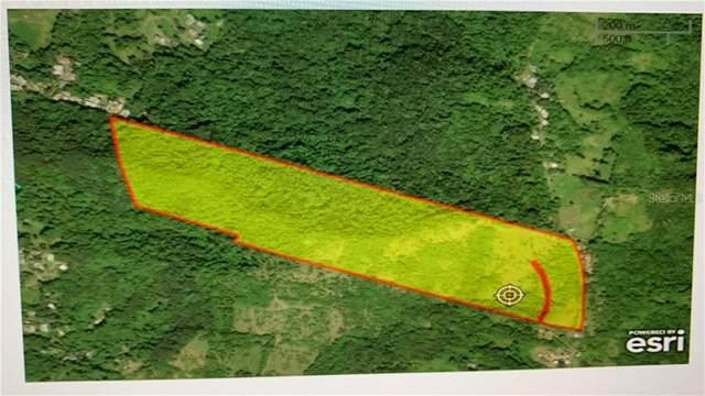 Sr 185 Km 10.5 Interior Lomas Ward, CANOVANAS, PR 00729 (MLS #PR9089842) :: Delgado Home Team at Keller Williams