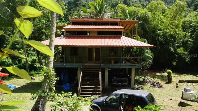 0 Carr. 140 Km .5 Bo. Caonillas, UTUADO, PR 00641 (MLS #PR9090289) :: Bustamante Real Estate