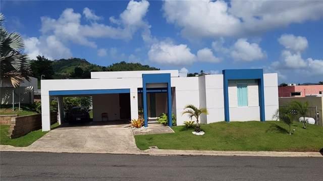 N-83 Calle Ucar, SAN LORENZO, PR 00754 (MLS #PR9090378) :: Delgado Home Team at Keller Williams