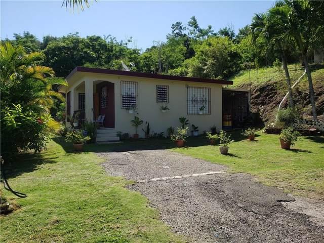 PR-378 Km. 0.5 Macana Del Rio Road A, GUAYANILLA, PR 00656 (MLS #PR9090407) :: Armel Real Estate