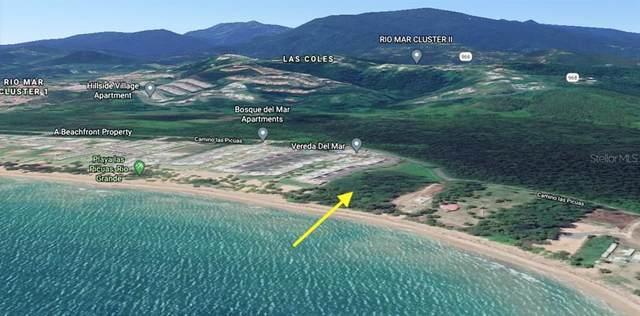 Carr. 968 Camino Playa Las Picuas Km 2.1, RIO GRANDE, PR 00745 (MLS #PR9092315) :: Baird Realty Group