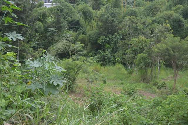 Carr 149 Km 19.5 Int Bo. Pesas Remanente, CIALES, PR 00638 (MLS #PR9092364) :: Vacasa Real Estate