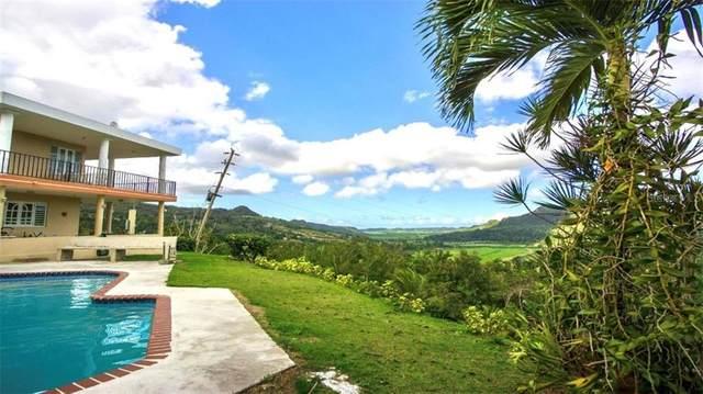 Road #642 Montebello Sect. Vegeta Km 1.2, MANATI, PR 00674 (MLS #PR9092888) :: Vacasa Real Estate
