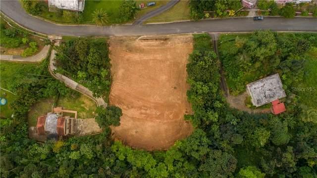 6 Calle 6, GUAYNABO, PR 00970 (MLS #PR9093007) :: Frankenstein Home Team