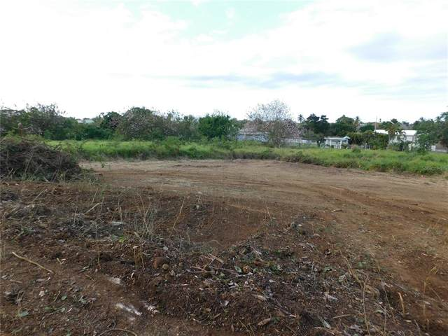 CARR 113 INT BO Mora Pedro Hernandez Del Valle Road, ISABELA, PR 00662 (MLS #PR9093660) :: Zarghami Group