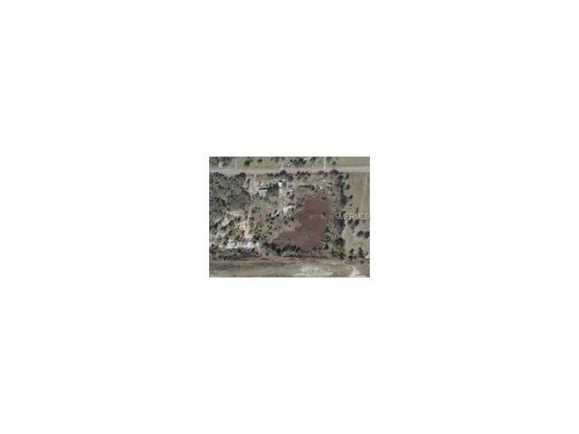 17632 Phil C Peters Road, Winter Garden, FL 34787 (MLS #R4706427) :: Griffin Group