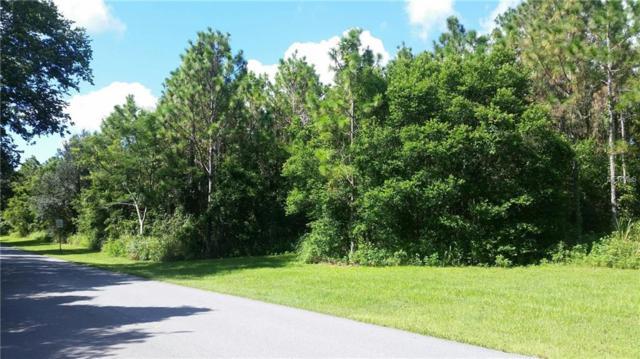 S Lakeshore Boulevard, Howey in the Hills, FL 34737 (MLS #R4706852) :: The Lockhart Team