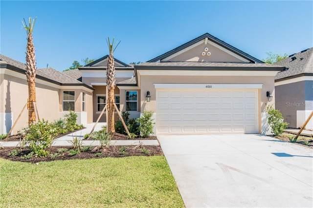 6001 Amberly Drive, Bradenton, FL 34208 (MLS #R4902838) :: Medway Realty